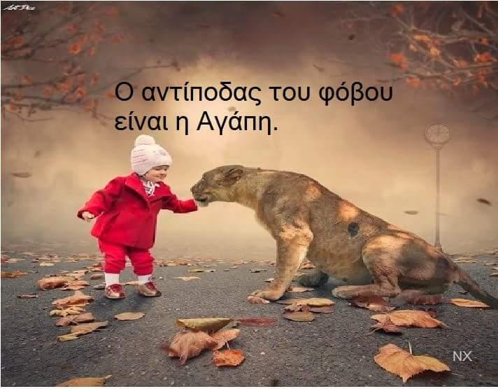 FB_IMG_1423136857552