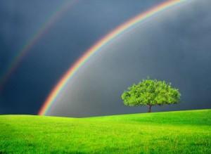 RAINBOW IN GREEN FIELD